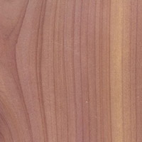 Western Red Cedar Softwood Clears Timber Grain